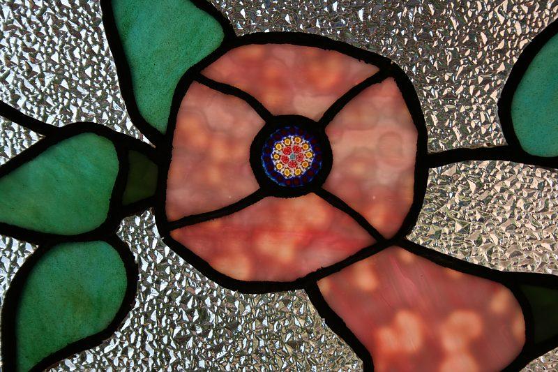 model anemona
