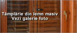 tamplarie-lemn-masiv-galerie-foto-buton